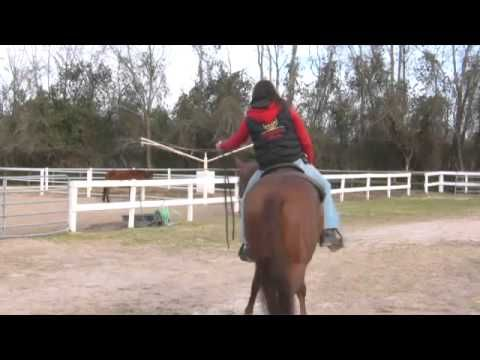 Video: How to Train a Horse to Neck Rein | eHow