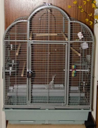 Parrot Cage For Sale in Northampton