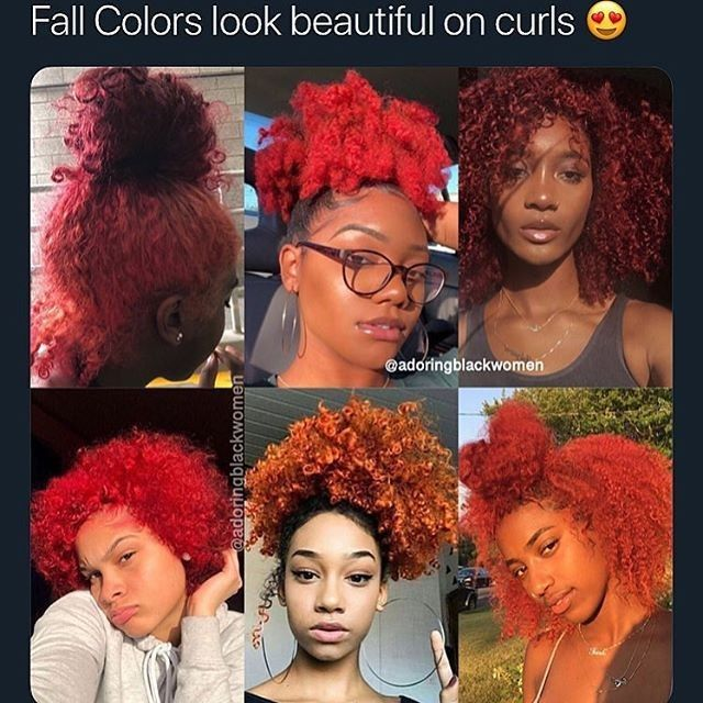 What color do you want to try on your natural hair? – – – #NaturalQueen #naturalhairjourney #naturalhaircommunity #blackisbeautiful #blackbombshells #urbanhairpost #teamnatural #amazingnaturalhair #naturalhairblogger #naturallyshesdope #curlbox #kinkychicks #bignaturalhair #kinks2curls #twistout #braidout #protectivestyles #coils #healthyhairjourney #respectmyhair #naturalhairjourney #naturalhairdaily #naturalhaircommunity #unconditionedroots #frolife #4chairchicks #healthyhair #4cnaturalhair ( # @naturalhairlovez )