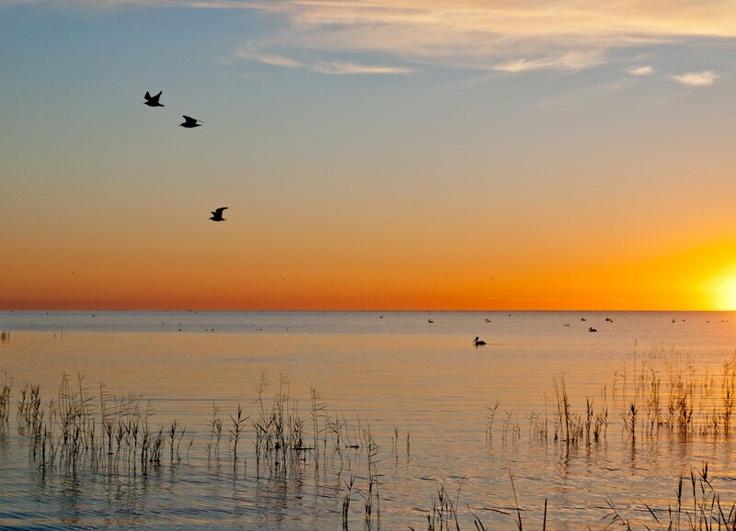 Lake Alexandrina South Australia