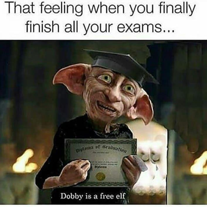 Harry Potter Harrypotter Dobby Free Exams Hashtag Harry Potter Memes Hilarious Harry Potter Funny Harry Potter Jokes