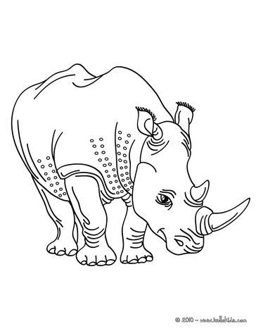 Two Horned Rhinoceros Coloring Page