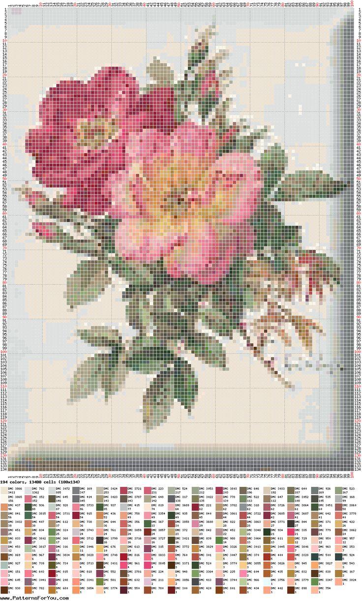 . de X-roses, d'altres flors...