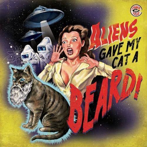 Aliens gave my cat a beard.