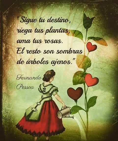 Fernando Pessoa Hermosas Frases