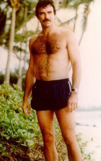 175 best images about Tom Selleck.....My Love