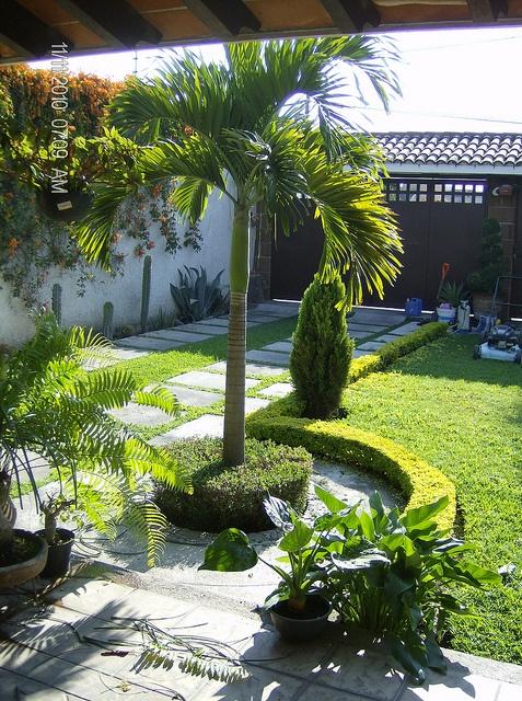 61 Best Jardines Bonitos Images On Pinterest Garden