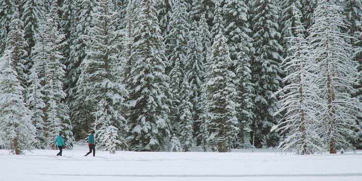 Snowshoe at Crested Butte - The Crested Butte Nordic Center offers $20 rentals for snowshoes, boots, and poles - Trail pass is $20 a day