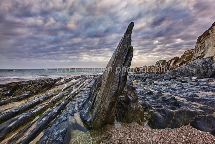 John S W Taylor     ROCK FINGER @ AYMER COVE    Mounted Limited Edition   signed Photographic Print: 2/10    Image captured on South Devon coast   near Toby's Point in September 2011.    Print: 60cm wide x 40 cm high  Mount: 72cm wide x 52 cm high    Neutral double mount   cellophane-wrapped.    Authentic photograph printed on   silver-based light sensitive paper.    £130