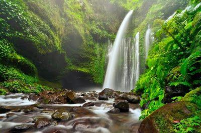 PERGIPEDIA  - Mencicipi Dinginnya Percikan Air Terjun Tiu Kelep Di Lombok . Menyebrangi sungai, m...