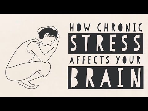 Stress isn't always a bad thing; it can be handy for a burst of extra  energy and focus, like when you're playing a competitive sport or have  to speak in public. But when it's continuous, it actually begins to  change your brain. Madhumita Murgia shows how chronic stress can affect  brain size, its structure, and how it functions, right down to the level  of your genes.