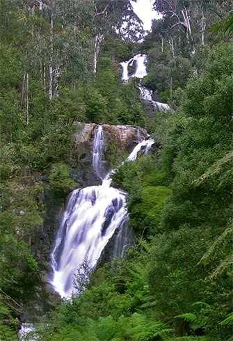 steavensons falls, marysville: 1h15mins travel, plus walking time