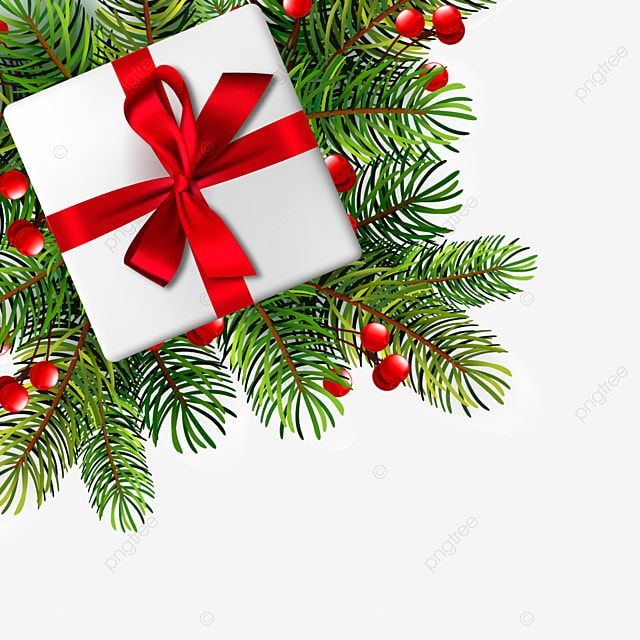 Christmas Illustration With Realistic Fir Branches Vector Illustration Christmas Gift Xmas Holiday Png And Vector With Transparent Background For Free Downlo In 2021 Christmas Illustration Merry Christmas Vector Branch Vector