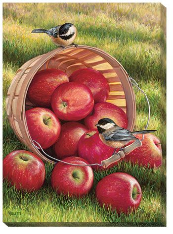 1/4 Peck & A Pair-Chickadees Wrapped Canvas Print by Rosemary Millette; item #F593002837
