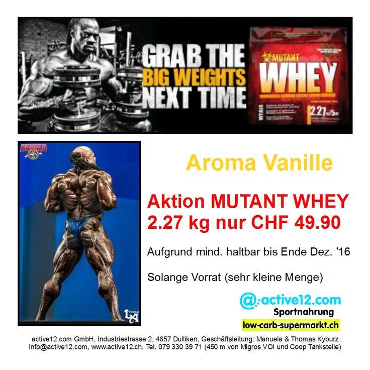 Aktion MUTANT WHEY 2.27 kg nur CHF 49.90. Aufgrund mind. haltbar bis Ende Dez. '16. Solange Vorrat (sehr kleine Menge). ►►► http://www.active12.ch/Nahrungsmittel-und-Sportnahrung/Sportnahrung-und-Ergaenzungen/Protein-Pulver/Eiweiss-Pulver--Whey-/MUTANT-WHEY-2-27-kg-Vanille-Beutel.html #Mutant #Whey #MutantWhey #Aktion #Sonderangebot #special #Bodybuilding #Muskelaufbau #Dulliken #Olten #active12 ►►► Lagerverkauf: http://www.active12.ch/info/Oeffnungszeiten.html