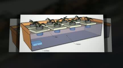 http://www.hydroponicsupplies.net.au Hydroponic Supplies @ http://www.hydroponicsupplies.net.au