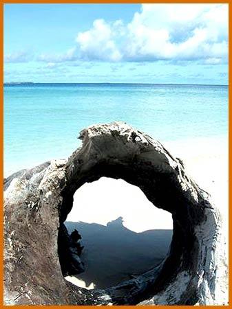 Maldives Kuredu Island Honeymoon <3
