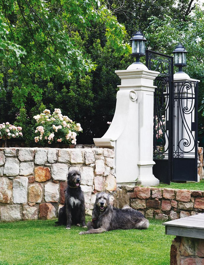 Roses and Rust: French Eclectic in Johannesburg