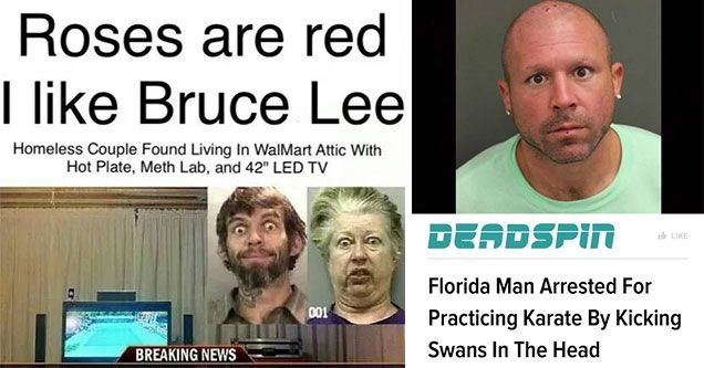 22 Adventures Of Florida Man That Goes With Your Morning Coffee Florida Florida Woman Man