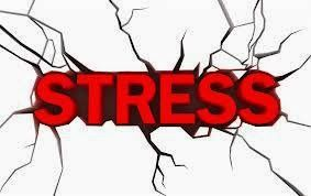 Fat Loss Factor - Google+ Did you know that stress is most likely the cause of your belly fat? Learn how to get rock hard abs and eliminate belly fat naturally. see more at  https://plus.google.com/103947725771691241965/posts