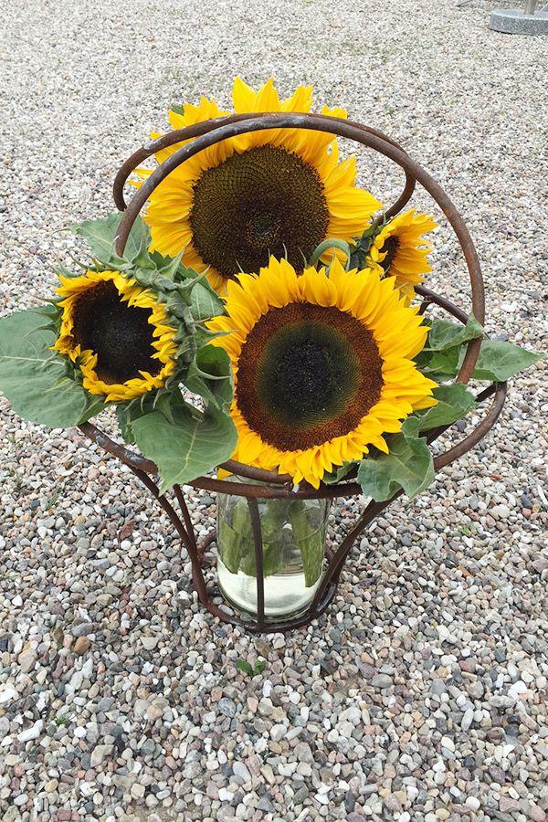Rund jernkurv der er flot selvom den er tom. Brug den inde eller ude. Til blomster, potteplanten eller fyld med store sten fra stranden.
