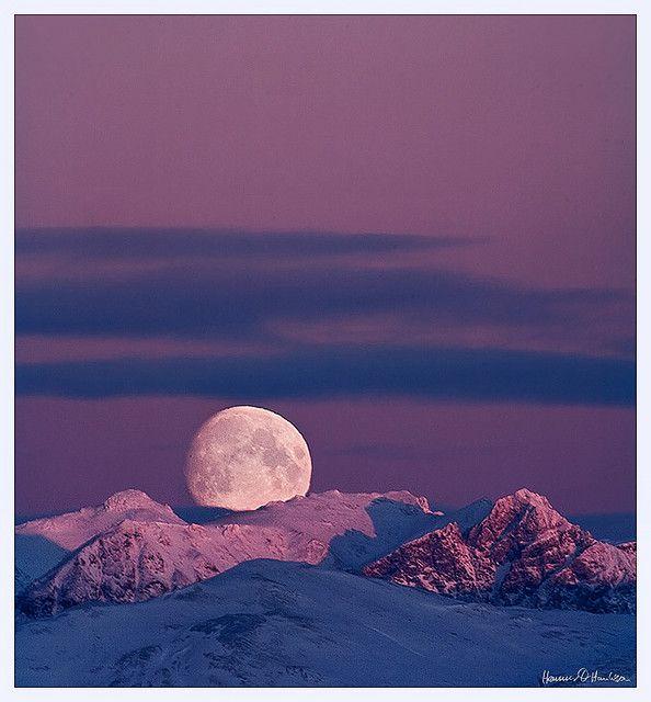 Moonage Daydream by hauxon, via Flickr