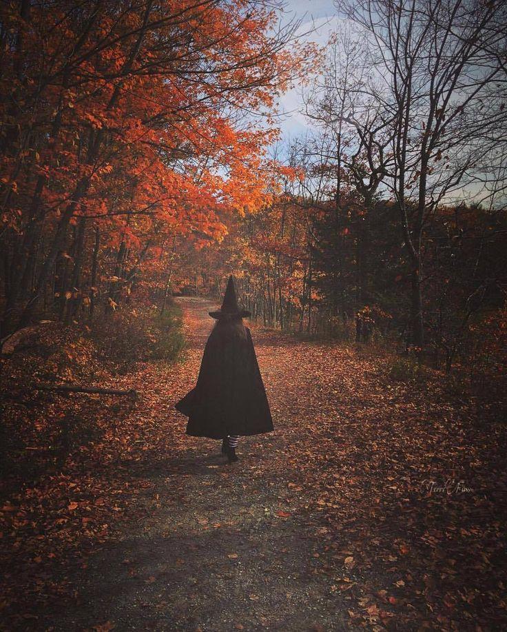 "autumncozy: ""By terrifoss """