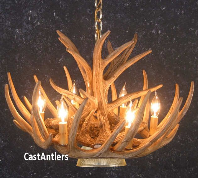 40 Best Whitetail Antler Chandeliers Images On Pinterest