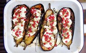 Eggplant with Buttermilk Sauce / Photo by Jonathan Lovekin