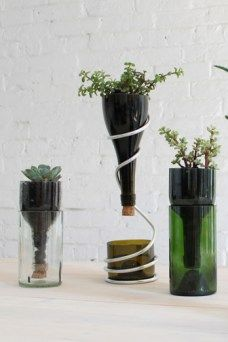 Create a desktop planter from recycled wine bottles