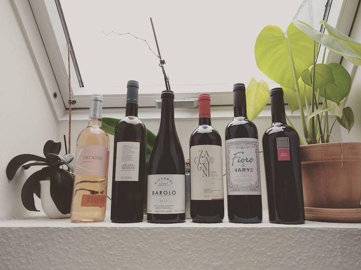 Vi har ikke holdt op med at skrive nye blogindlæg. Vi vender tilbage næste uge med et nyt spændende indlæg hver fredag! Imens kan I besøge os på vininorden.com/shop og nyde 10% rabat på alle vores lækre italienske vine udvalgt af ægte italienere for jer #italienskvin #kvalitetsvin #rødvin #hvidvin #hygge #vinblog #wineblog #madogvin #vinsmagning #spændende #lækrevine #aarhus #københavn #vinhandel #vingård #nybutik #besøg #tilbud #italiensk #danmark #vininorden #fb #tw #pin