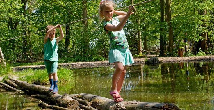 Klauter door de bomen en plons in het water. Foto: Natuurspeeltuin De Boomhut.