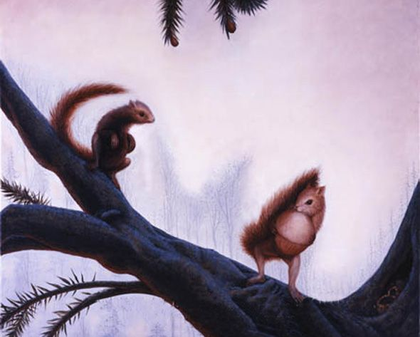 Squirrels in Action Optical Illusion - http://www.moillusions.com/squirrels-in-action-optical-illusion/