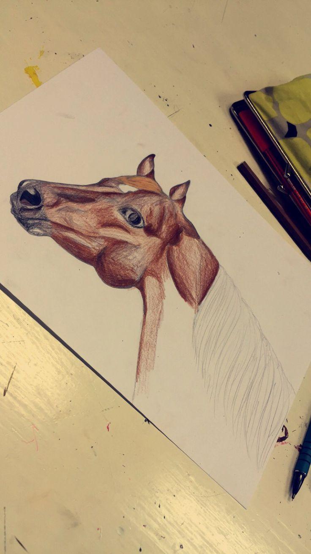 #aqha #quarterhorse #drawing #today #art #lesson #boring