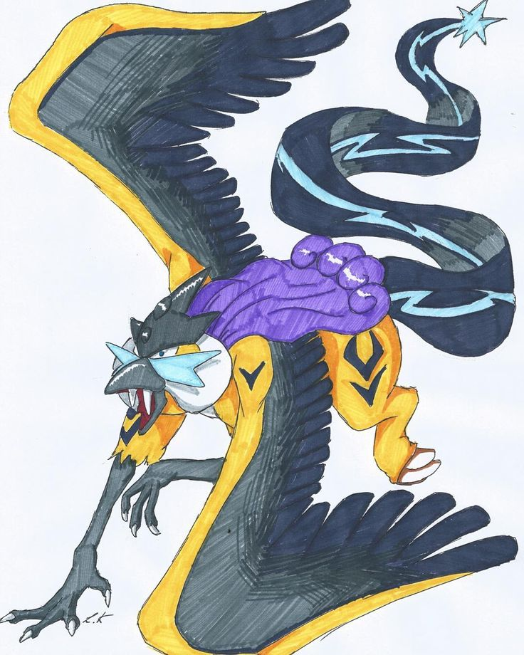 Raiktos  #pokemon #pokemongo #raikou #arktos #electric #ice #fusion #art #instadaily #instagood #cloured #monster #animal #fantasy #bird #cat #griffin