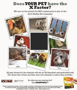 Does Your Pet have the X Factor