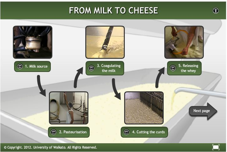 This interactive explains the processes involved in making traditional Gouda cheese.