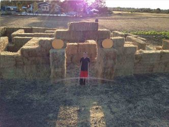 Cool Hay maze. I think on a smaller scale would be great as silly string battle ground.