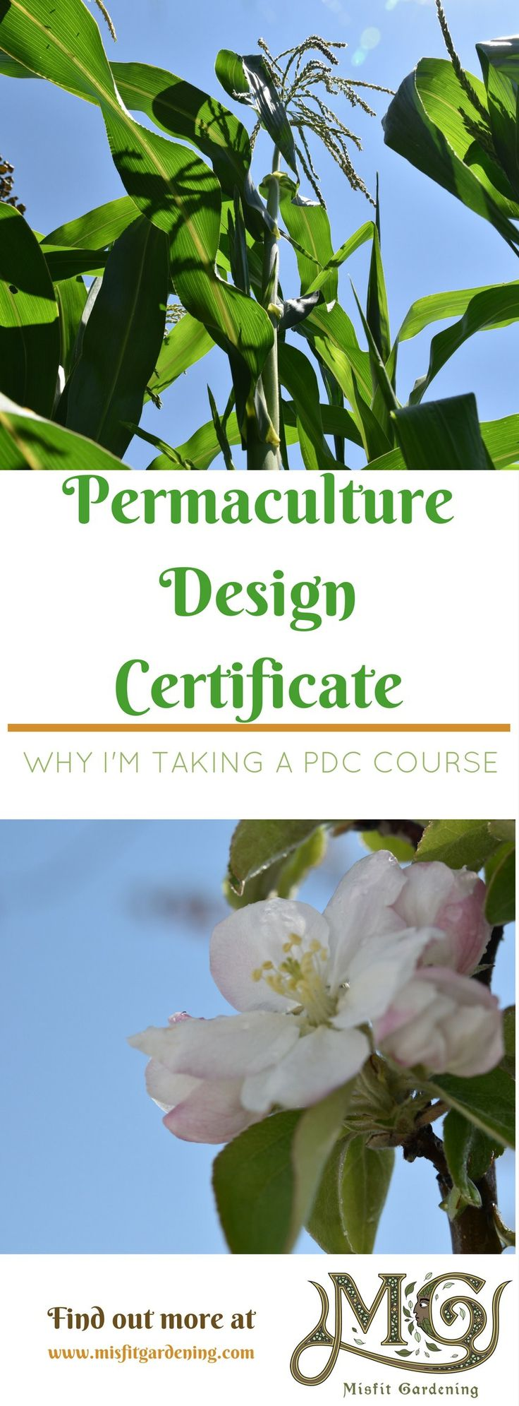 Find out Why I'm taking a PDC, Permaculture Design Course. Click to find out more or pin it and save for later.