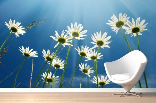 Best 25+ Flower Mural Ideas On Pinterest