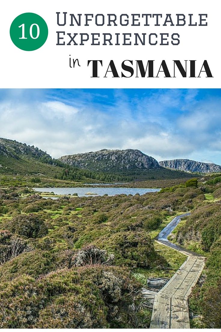 10 Unforgettable Experiences in Tasmania