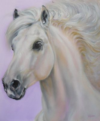 Carol Gillan Animal Artist & Pet Portraits - FOR SALE - HORSE PORTRAITS IN OIL
