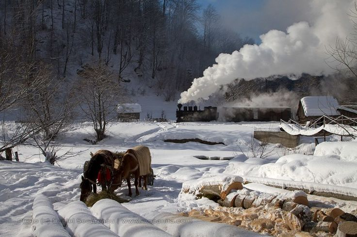 Winter Maramures Romania 1280×852 - High Definition Wallpaper | Daily Screens id-6592