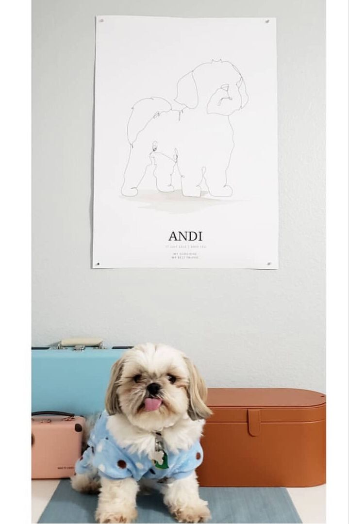 Dog Gift Poster Design Dog Gifts Pets Personalized Posters