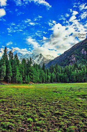 Fantastic photography of the near Nanga Parbat fairy meadows Gilgit Baltistan Pakistan