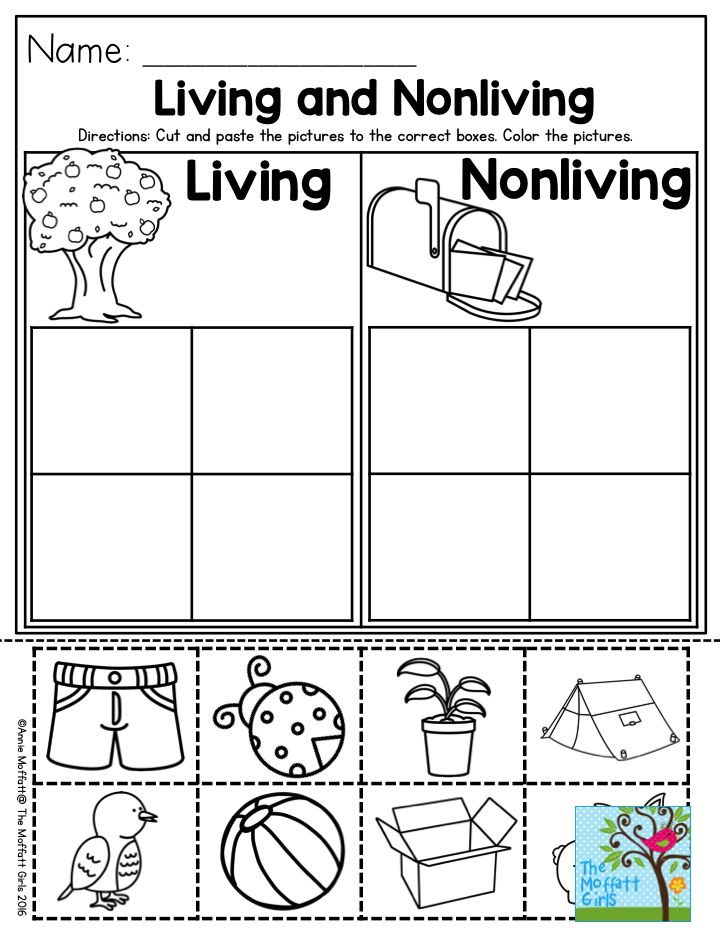 Living and Nonliving- a great Preschool activity to help students categorize…