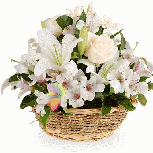buchete di fiori   Mazzi e composizioni di fiori Bianchi, Consegna a domicilio
