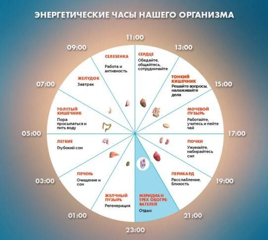 В китайской медицине есть биологические часы нашего организма, определяющие проблемы в каком органе не дают вам спать.