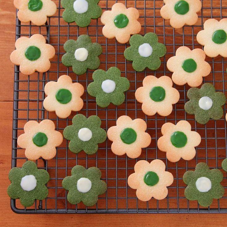 Matcha cookie  抹茶のクッキー レシピを公開してから 作ってくださる方が多く 嬉しいです  そして最近 Instagramのつくれぽ #marimo_cafe にも たくさんのつくれぽを ありがとうございます いつも楽しみに拝見してます  そしてこれからも待ってます  抹茶クッキーは 以前にも書きましたが 動画レシピになっています ゼクシィキッチン marimo でWeb検索してみてください  今日も良い天気すぎて 暑い暑い  熱中症に気をつけなきゃですね