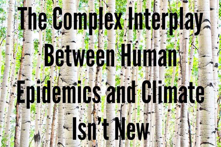 The complex interplay between human epidemics and climate